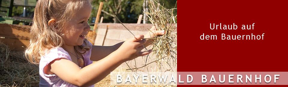 Bayerwald Bauernhof